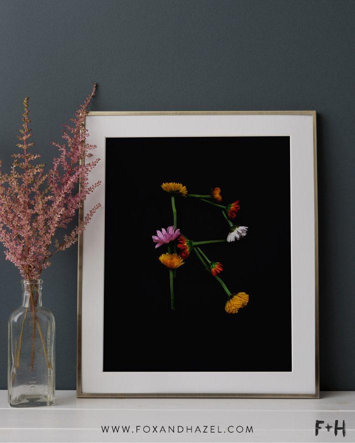 Free Modern Botanical Prints - Fox + Hazel 1