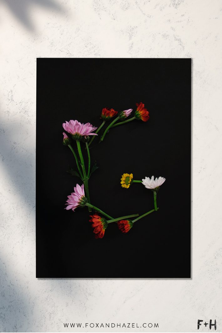 Free Modern Botanical Prints - Fox + Hazel 3