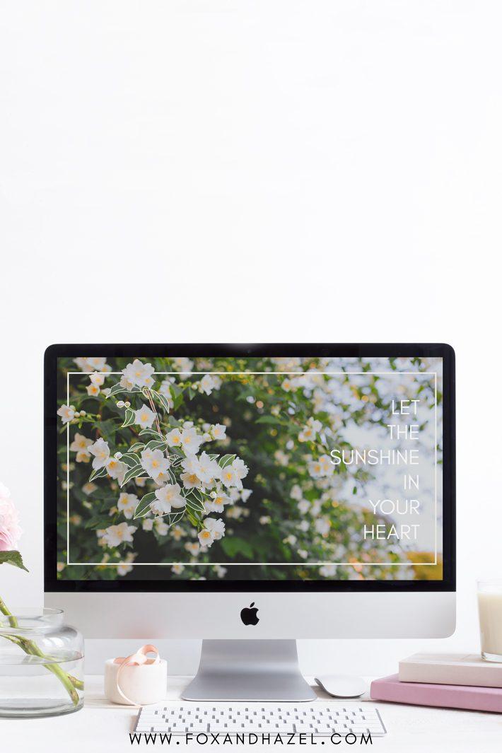 spring desktop background image on computer monitor