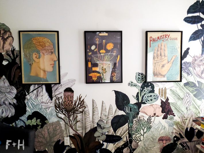 A series of posters hanging on a wall that has a jungle print on it. Posters are of a phrenology head, a dandelion diagram and a palmistry hand.